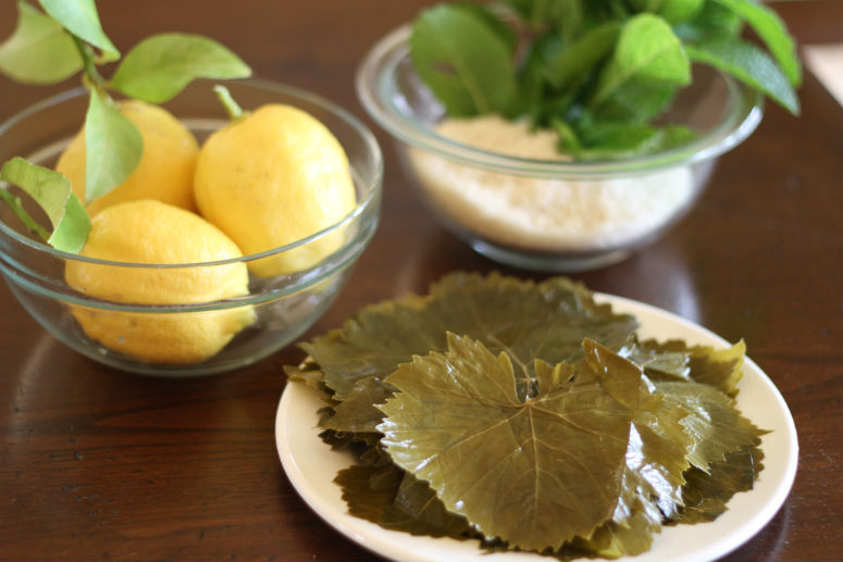 Dolmas or Stuffed Grape Leaves Recipe by Ceja Vineyards