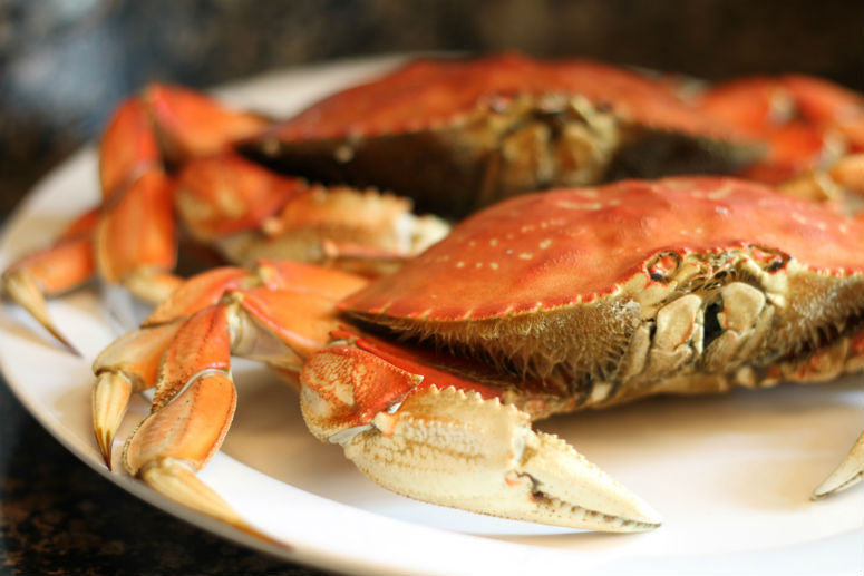 Steamed Dungeness Crab Recipe by Ceja Vineyards